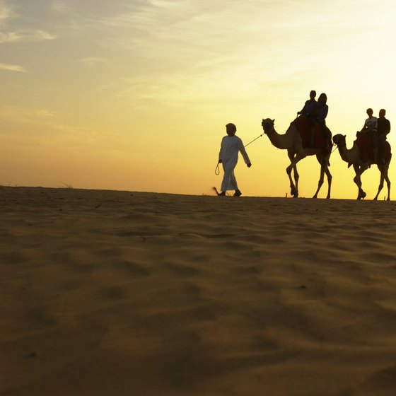 Dubai offers numerous day tours, including brief visits into the desert.