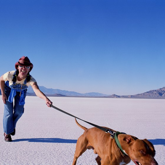 When traveling to Wendover be sure to take a jaunt onto the nearby Bonneville Salt Flats.