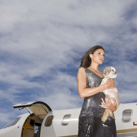 Taking your pet abroad requires advanced planning and proper paperwork.