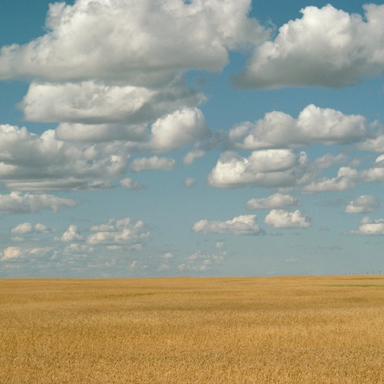 Wheat and grain fields abound in Canada's Saskatchewan province.