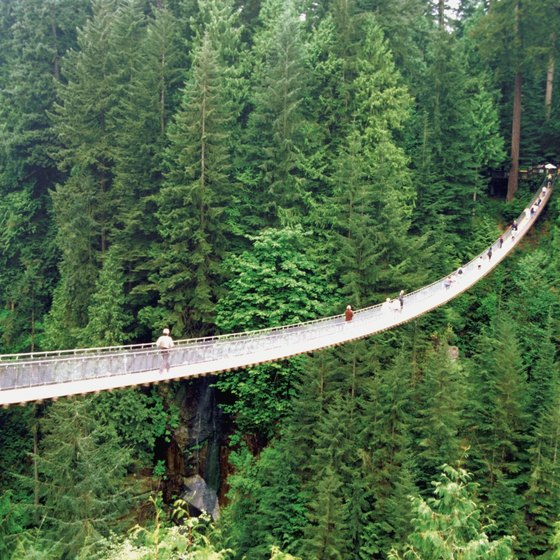 The Capilano Suspension Bridge spans a river in the Canadian rain forest.