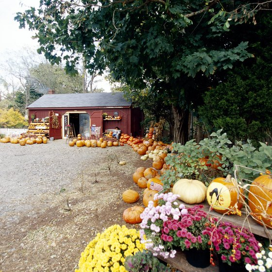 Farms in Massachusetts offer haunted corn mazes.