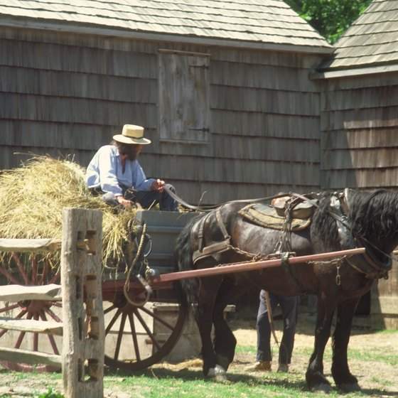 Many tours of Amish Country include a trip to a working farm.