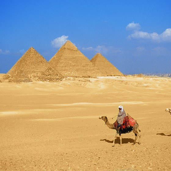 Camel Rides to the Egyptian Pyramids