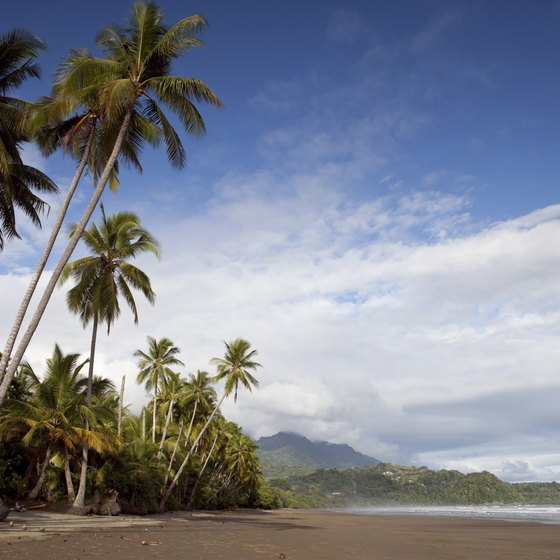 Enjoy the beach along the Costa Rica coastline.