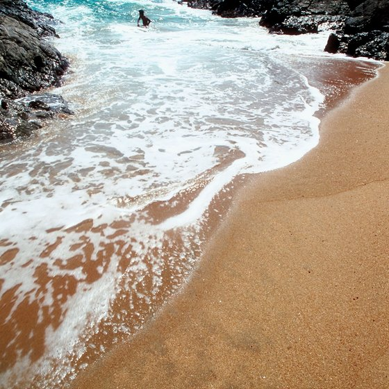 Oaxaca offers sandy beaches that provide acess for snorkelers to see reefs and fish.