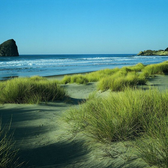 There are a variety of RV parks located near the Oregon Dunes.