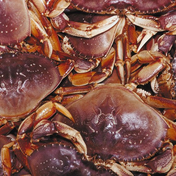 Crab and other seafood delicacies are plentiful at the Dungeness Crab and Seafood Festival.