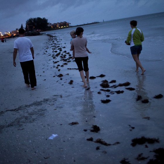 Florida's Gulf Coast beaches beckon.