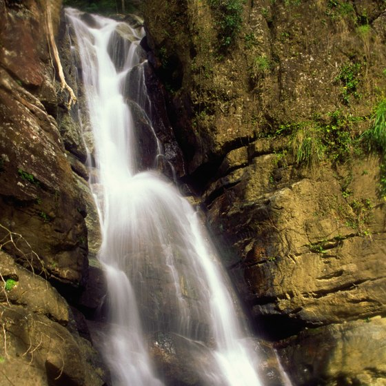 The trail to La Mina Falls is the most traveled in El Yunque.