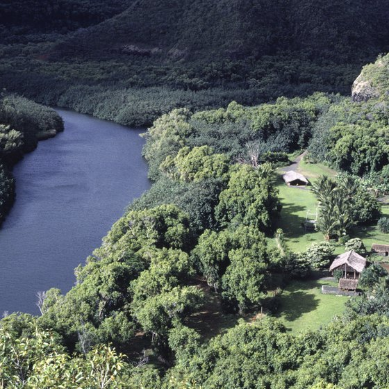 Kauai's Wailua River is a popular location for kayaking.