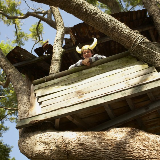 Not just for kids: adults can enjoy tree houses too!