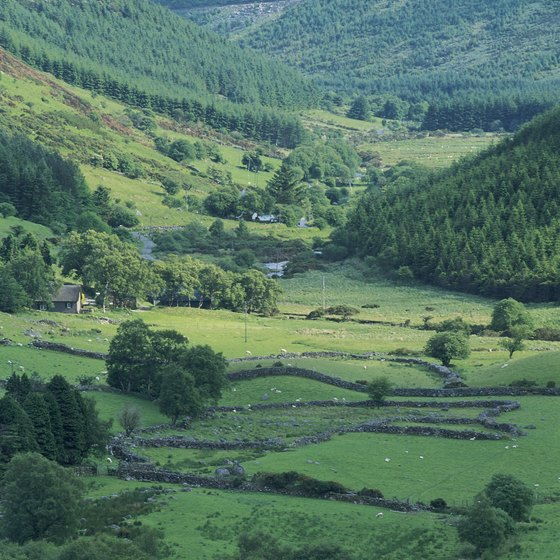 Explore the natural landscapes of the Wicklow mountains.