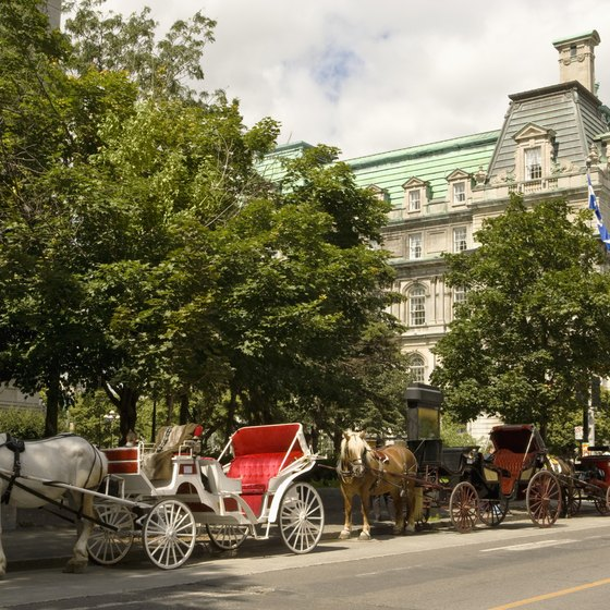 Montreal's city center has a very old world feel.