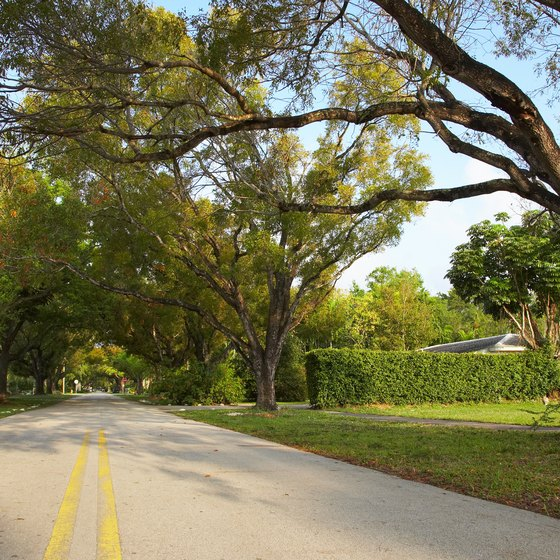 Florida offers a mind-boggling array of choices for short road trips.