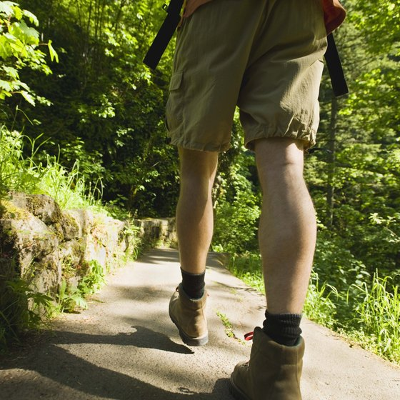 Visitors to Eugene will find hiking trails nearby.