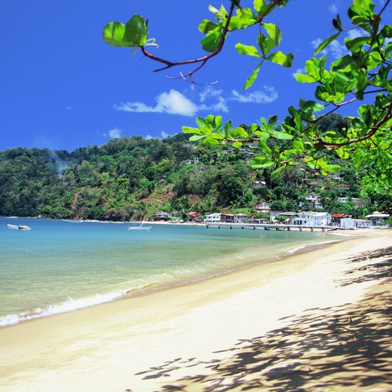 The unspoiled island of Tobago is one of the Caribbean's premier ecotourism destinations.