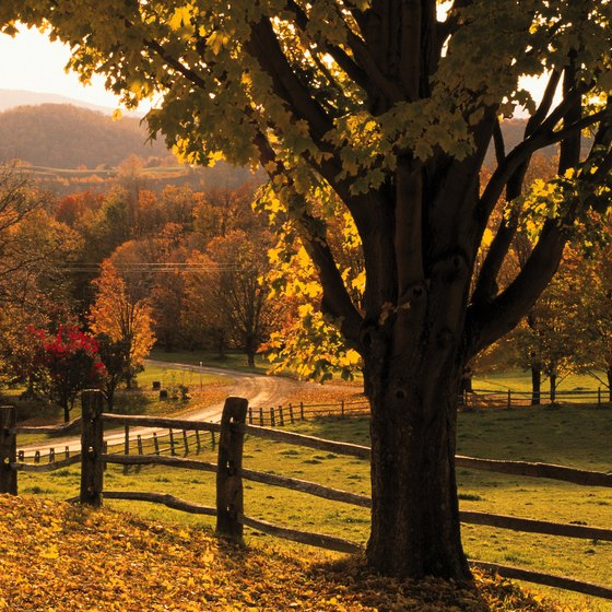 The fall foliage is spectacular in Woodstock, Vermont.