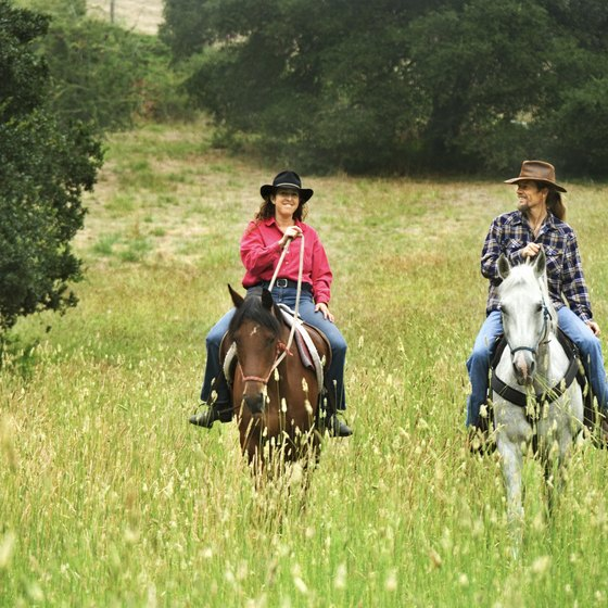 Learn to horseback ride together in Middletown.