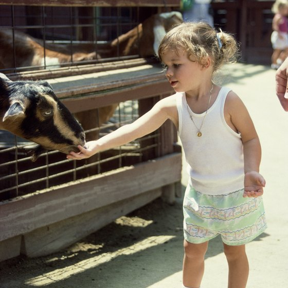 Petting zoos are geared primarily for children.