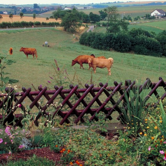 Southern Luxembourg features fertile countryside and plentiful pastures.