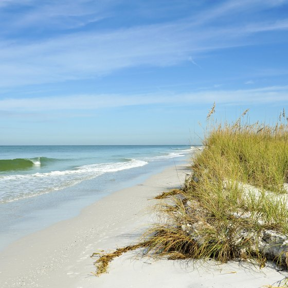Explore crystal blue waters off the coast of Manatee County's Amelia Island.