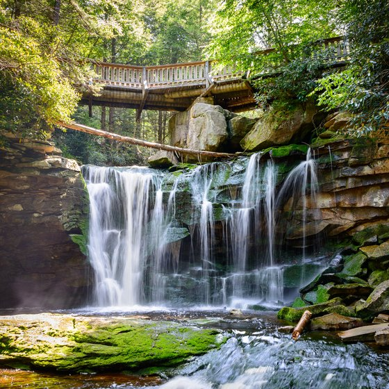 The Best Campsites in Blackwater Falls State Park, West Virginia