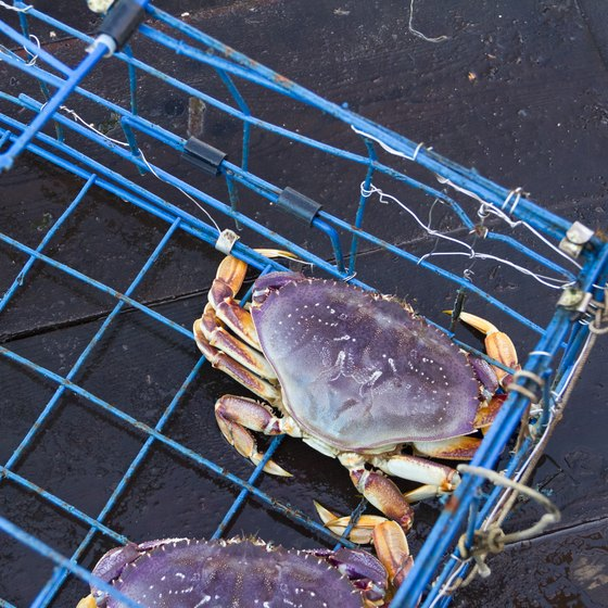 Fishing & Crabbing in Delaware