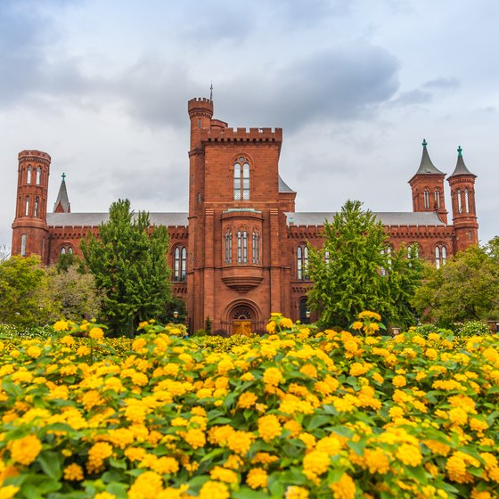 How Much Time Does It Take to Go Through the Smithsonian