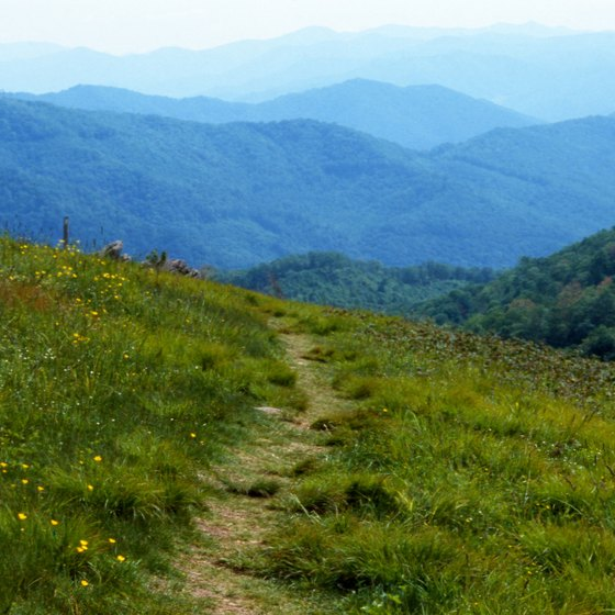 Good Places to Hike on the Appalachian Trail in North Carolina