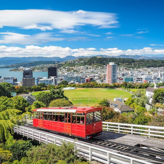 All-Inclusive Tours to New Zealand