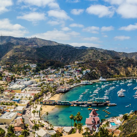 Cars Allowed on Catalina Island
