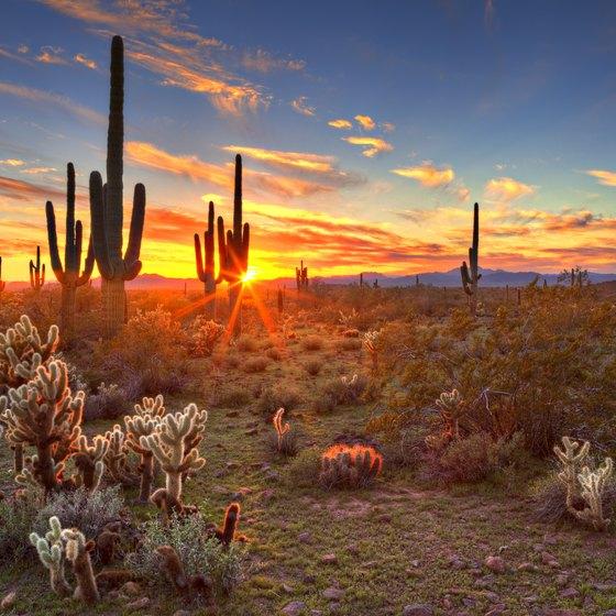 Camping In Quartzsite Arizona Usa Today