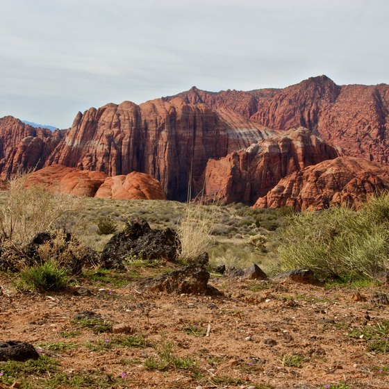 Easy ATV Trails Near St. George, Utah