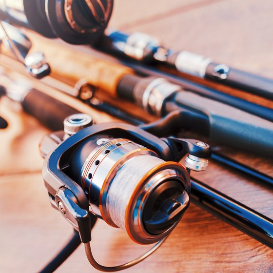 Hunting & Fishing Regulations in Tennessee