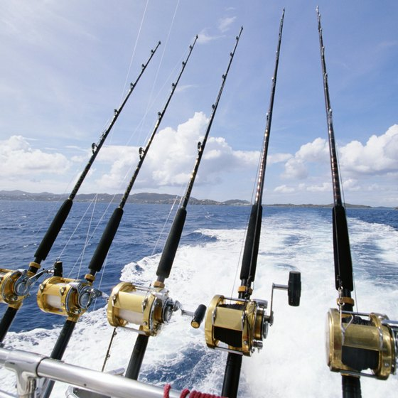 Fishing Laws in South Carolina
