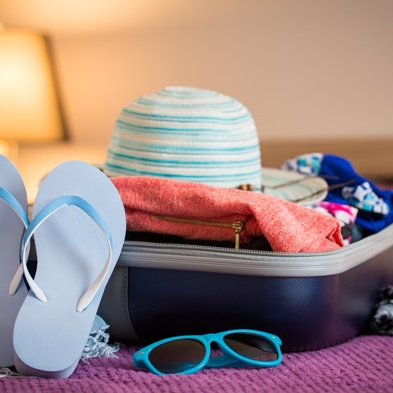 Baggage on Princess Cruise Tours