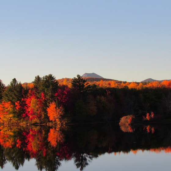 New England Fall Foliage Bus Tours