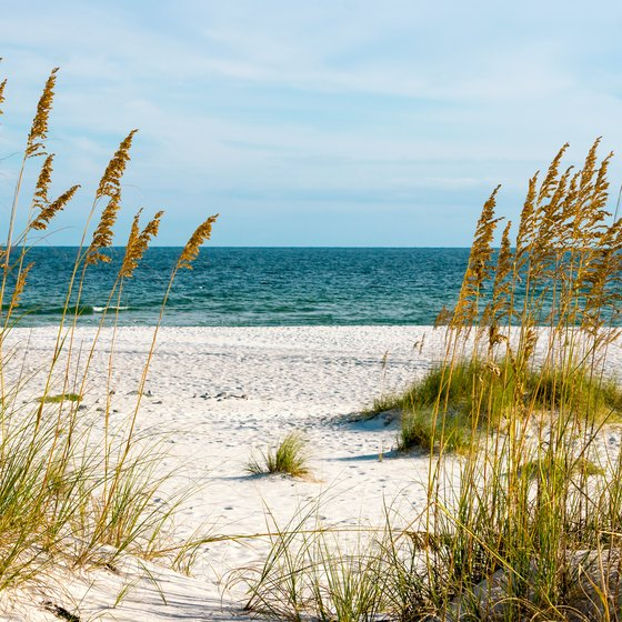 Popular Beaches in Alabama