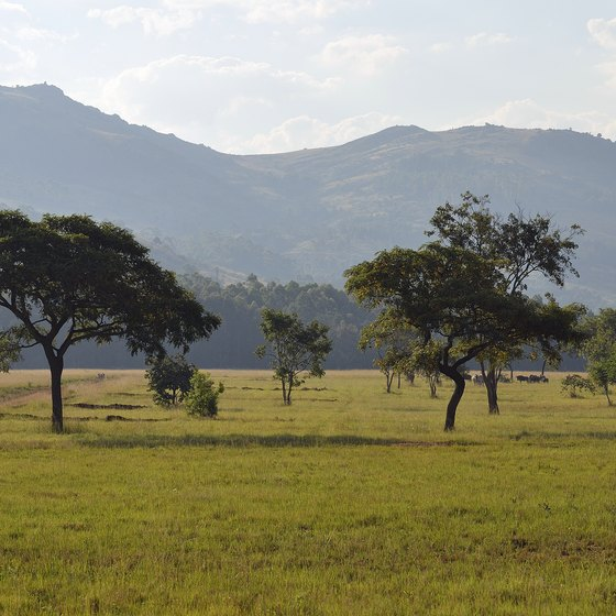 What Is the Climate in Swaziland?