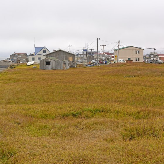 Tours of Barrow, Alaska