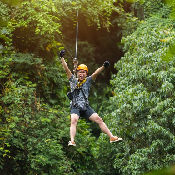 Zip Lining in the Amazon Rainforest
