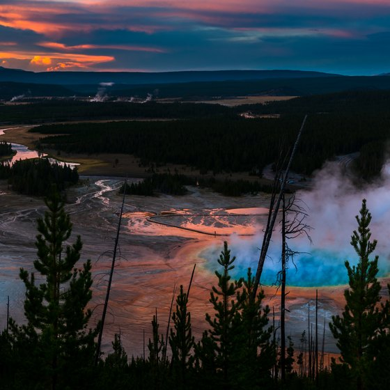 The Top Places to Eat in Yellowstone National Park