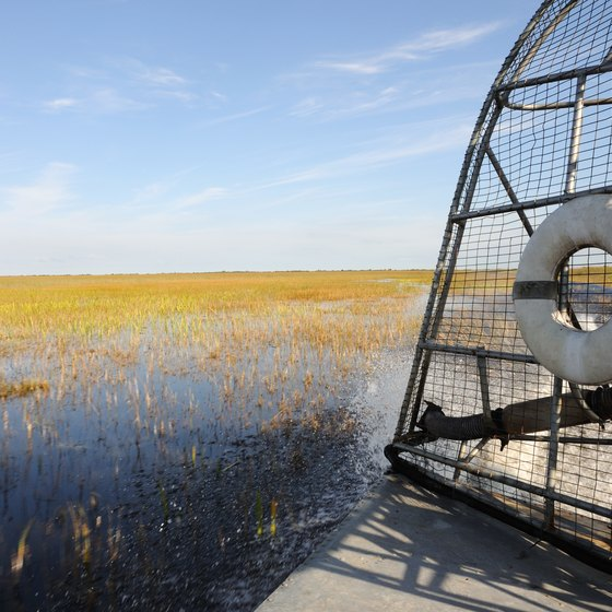 Airboat Tours in Everglades National Park
