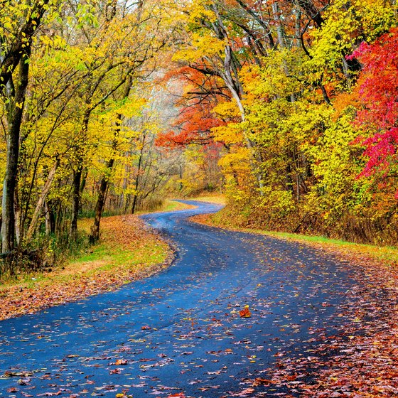 Fall Foliage Tours in Ohio