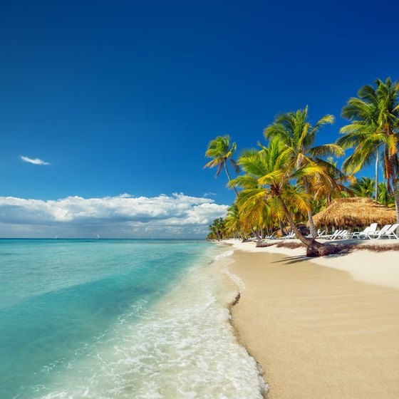 All-Inclusive Family Resorts in the Dominican Republic