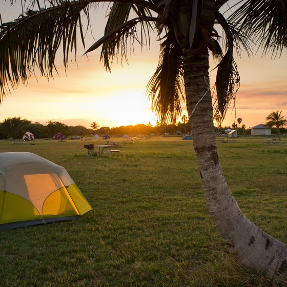 Winter Camping in Florida