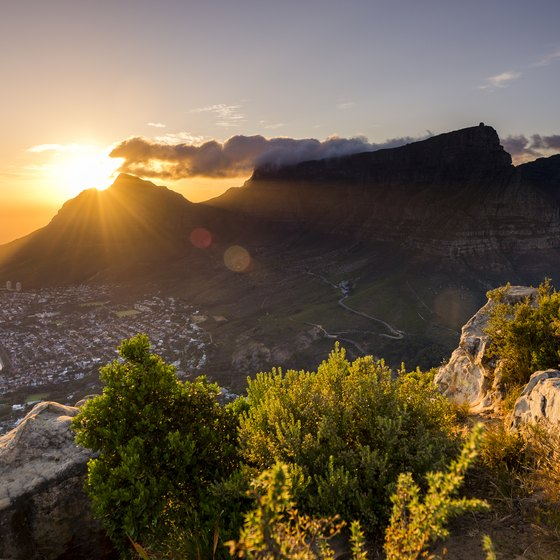 Quick Cultural Facts on South Africa