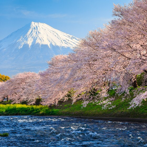 Famous Places or Landmarks to Visit While in Japan