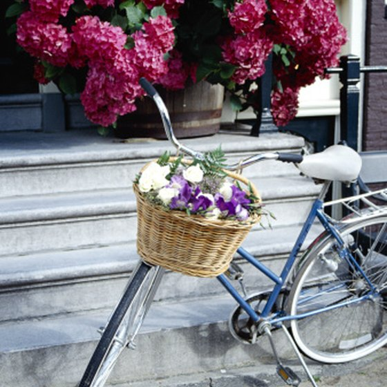 A bicycle and flowers: two common sights in the Netherlands.